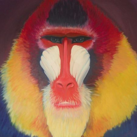 Baviaan, acrylverf op canvas, 3x100x100cm, 2012