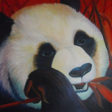 Panda, acrylverf op canvas, 80x80cm, 2012